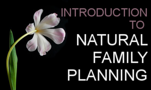 Introduction to Natural Family Planning